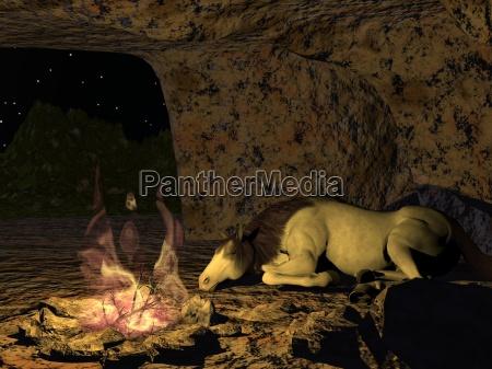 luce cavallo comodo grotta di notte