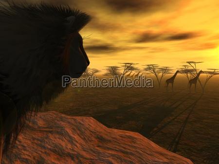lions cena