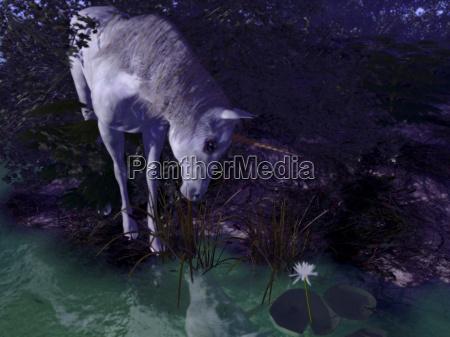 albero pietra sasso cavallo animale statua