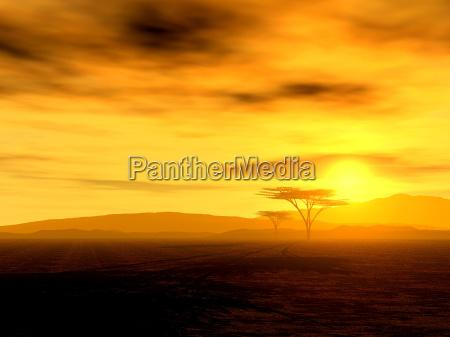 arte albero montagne deserto vacanza vacanze