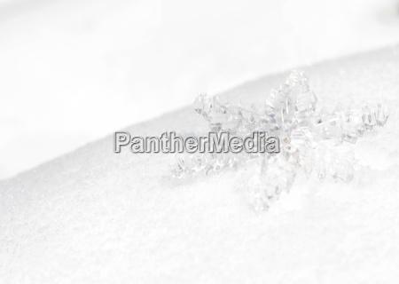 ghiaccio cristallo stella di ghiaccio fiocco