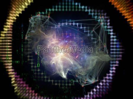 la vita interna della rete