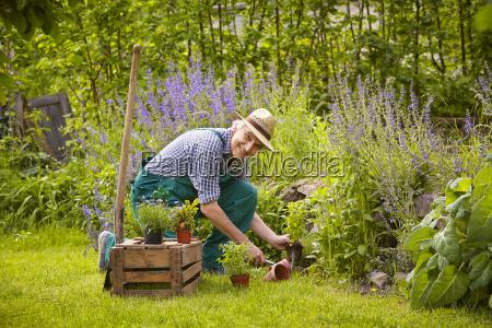 risata sorrisi giardino piantare seminare coltivazione