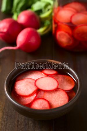 cibo dolce condimento radice perpendicolare verdura
