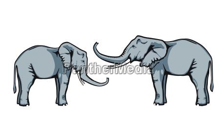 amichevole elefante fiducia ogni